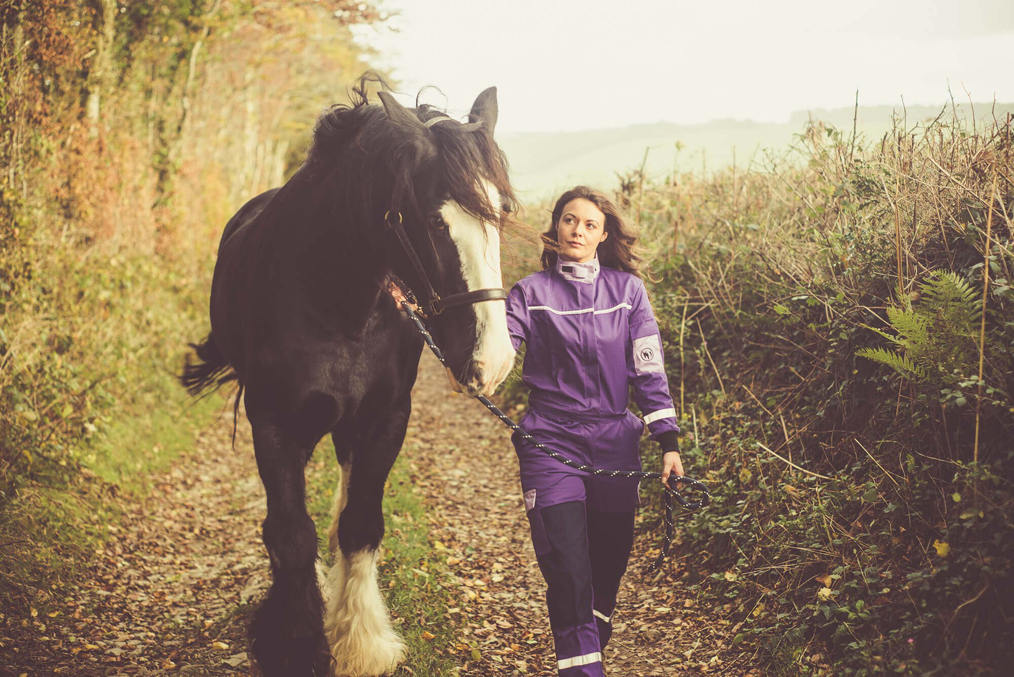 product-life-img horse and a woman in purple